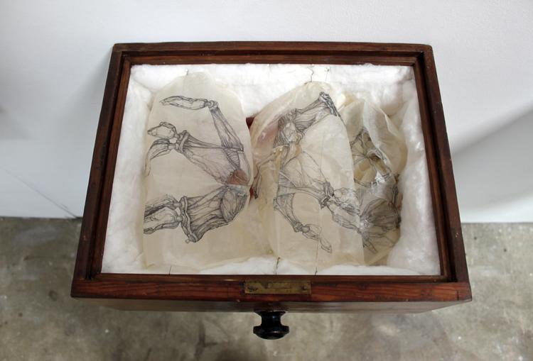 Kate Hammersley Relics (detail)